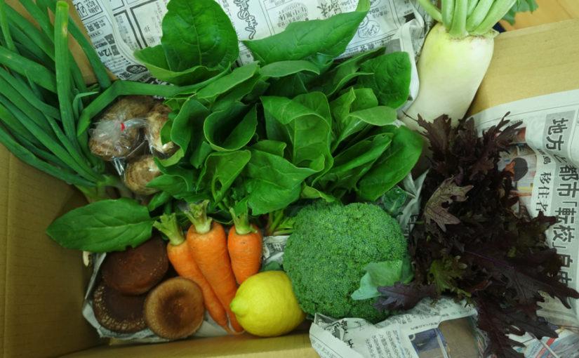 12月27日発送分 今年最後の熊野野菜セレクトボックス