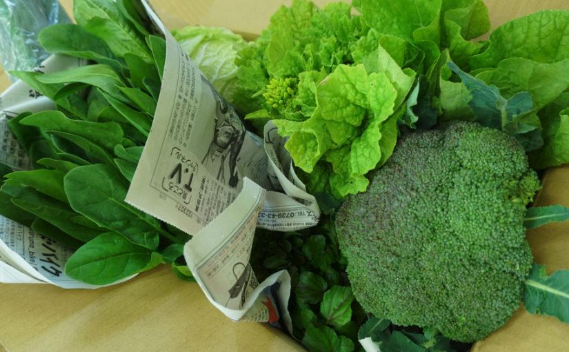 2017年 最初のセレクトボックスの野菜は?