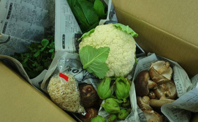 1月20日発送分 熊野野菜セレクトボックスの内容は?